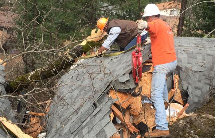 Timber Warriors Members working