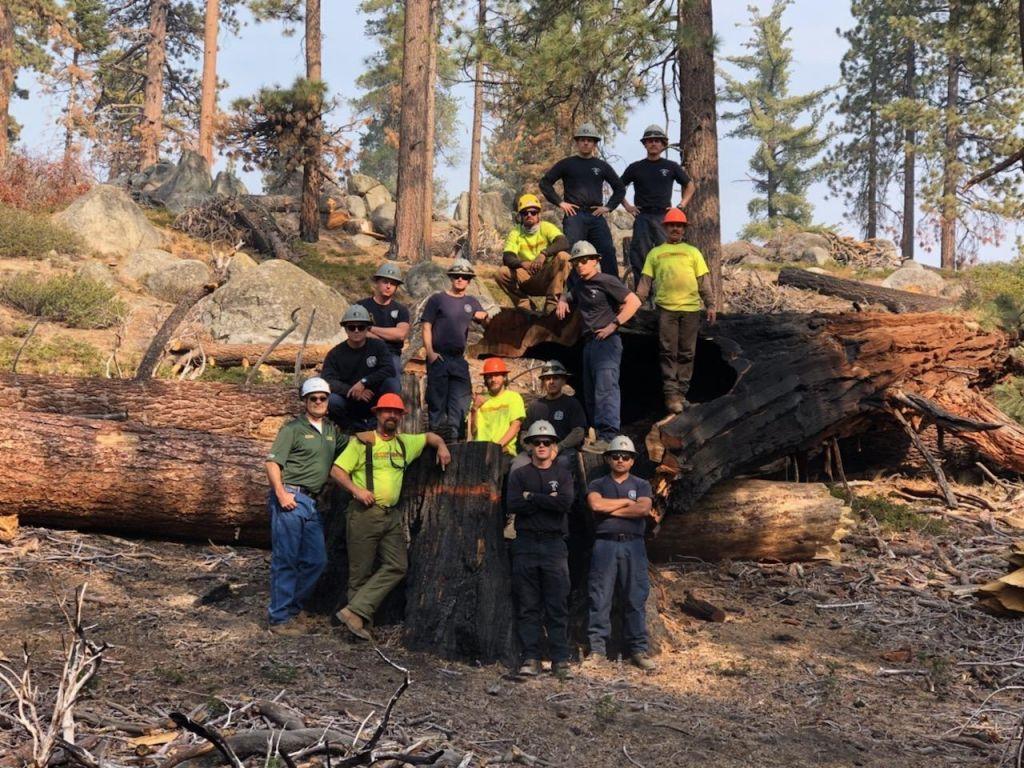 Timber Warriors Members
